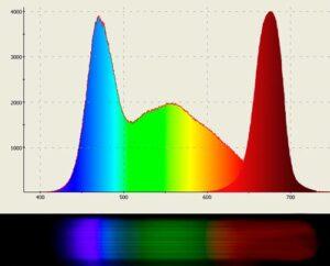 Спектр білого світлодіоду К 5000; CRI =90 та червоного.
